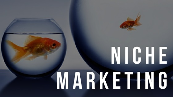 Niche Marketing - BMT Micro